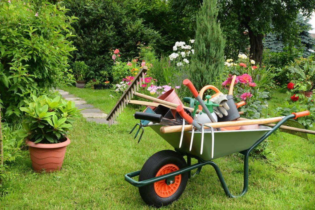 هزینه ثبت موسسه باغبانی