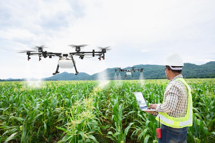 جواز تاسیس کلینیک صنایع تبدیلی و تکمیلی کشاورزی