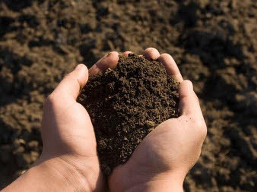 پروانه تاسیس و توسعه واحد تولید خاک پوششی