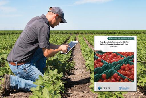 مدارک اخذ مجوز فعالیت زنجیره های کشاورزی