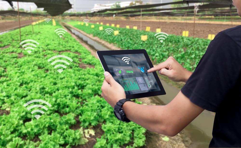 کد شناسایی محصول کشاورزی گواهی شده