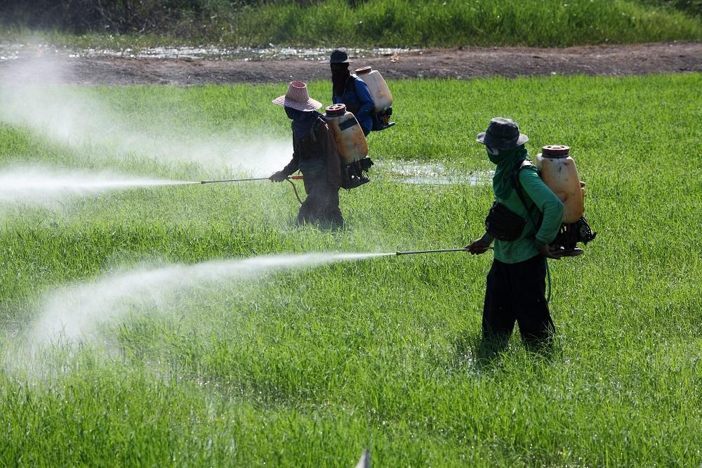 پروانه کاربرد نشان حد مجاز آلاینده در محصولات کشاورزی